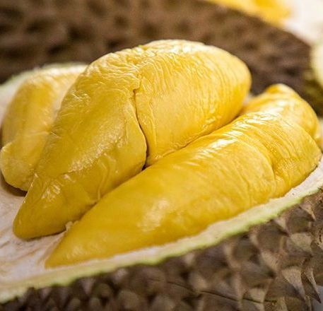 Dinobatkan Menjadi Raja Durian, Apa Kelebihan Durian Musang King?