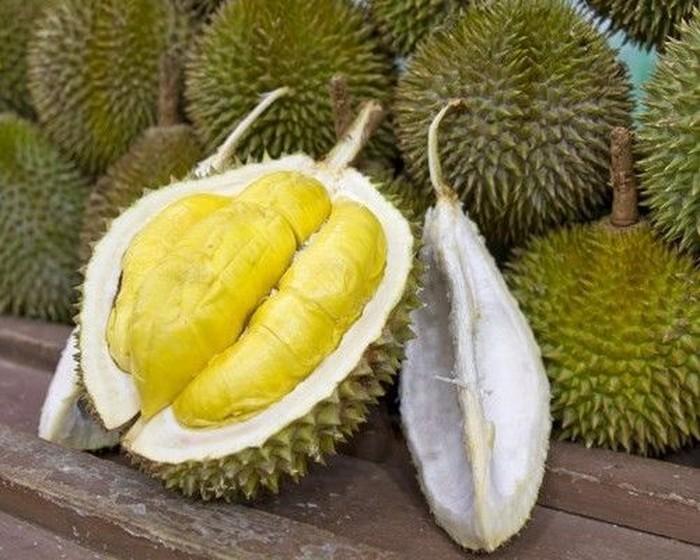 Ciri Durian Musang King Mulai dari Pohon Hingga Buah