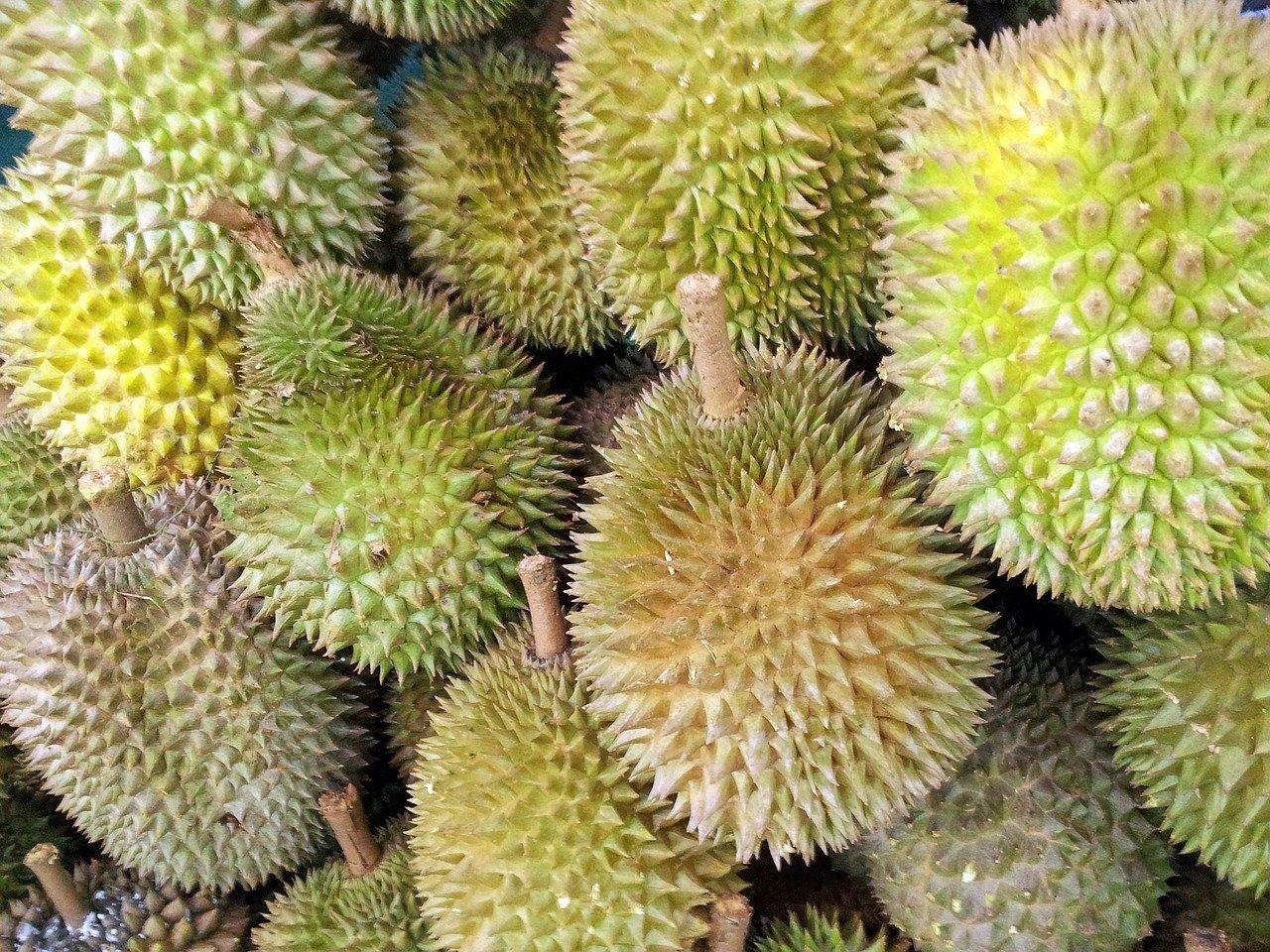 Kandungan Zat Buah Durian dan Dampaknya Bagi Tubuh
