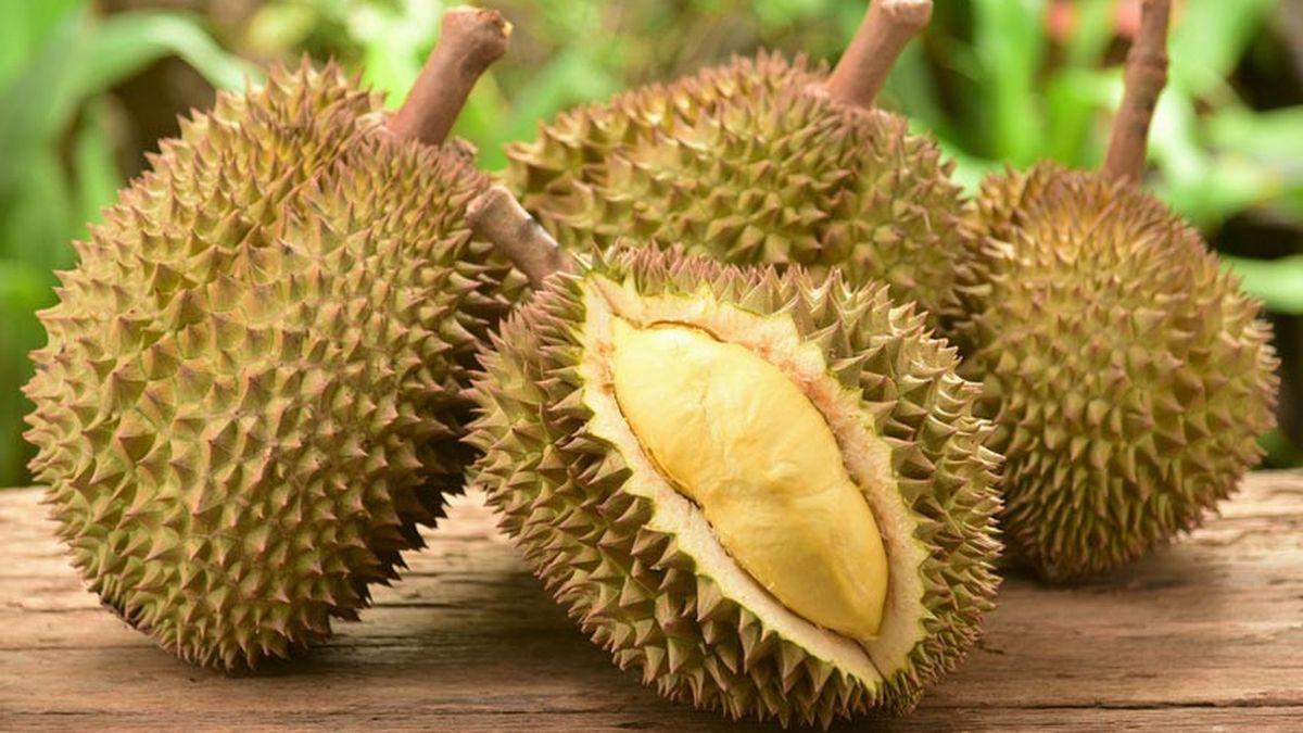 Tips Memilih Durian Agar Mendapatkan yang Tepat