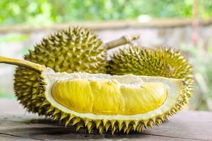 Fakta Mengenai Durian Sang Raja Buah yang Banyak Disukai