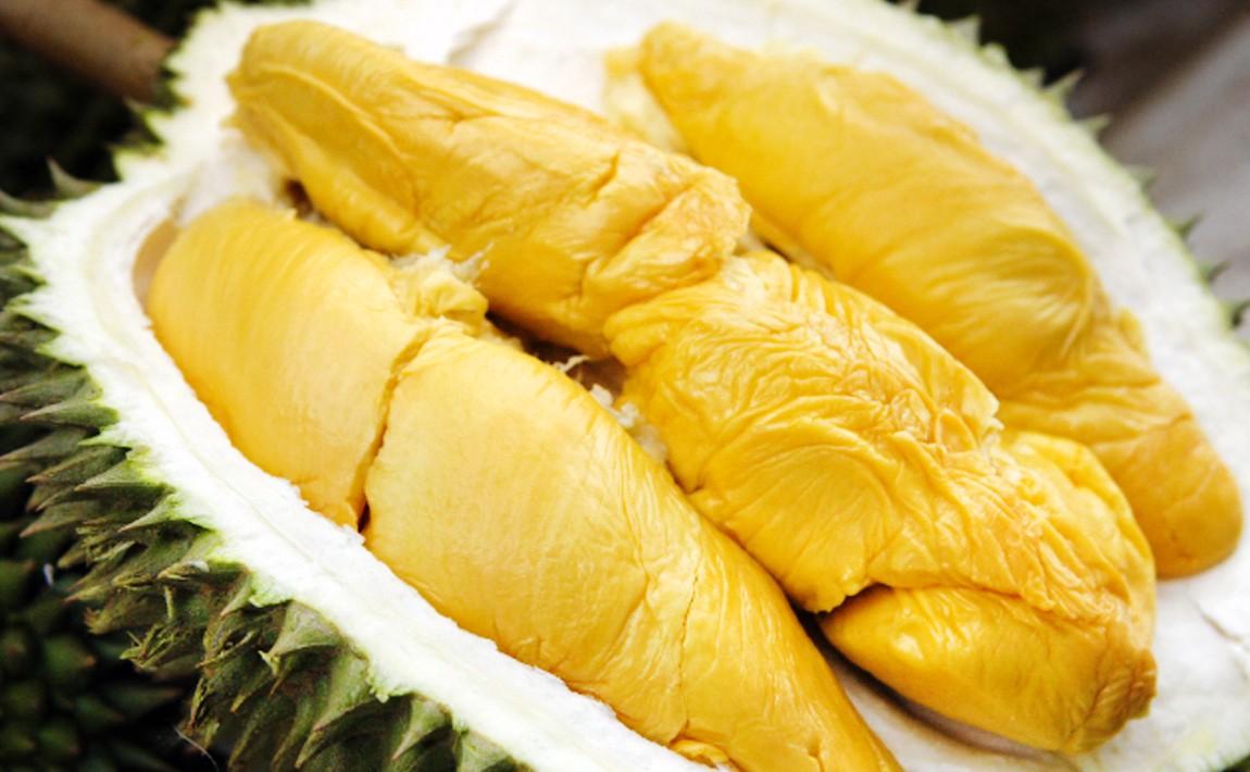 Manfaat Buah Durian dan Cara Mengkonsumsinya Dengan Aman